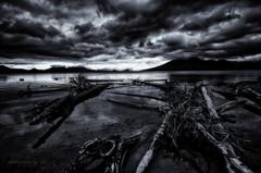 荒れた湖岸
