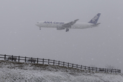 春の雪 RJAA
