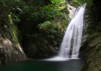 NIKON NIKON D7000で撮影した(琴の滝)の写真(画像)