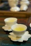 梨山高山茶
