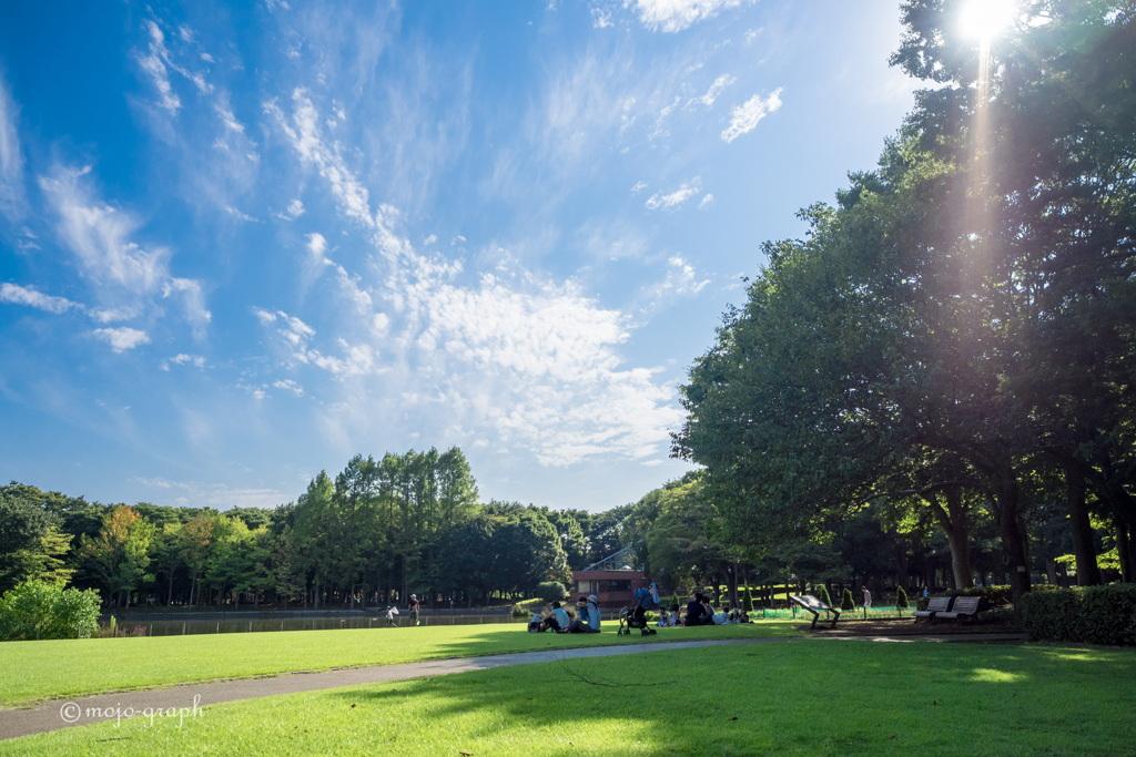 公園の芝生でランチ