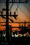 夕焼け電信柱
