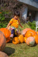 ごろごろかぼちゃ
