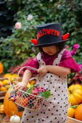 Let's go Trick or Treating!