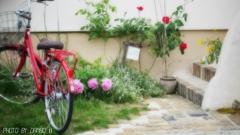 赤い自転車 <3>