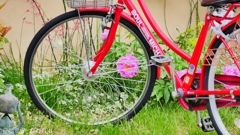 赤い自転車 <1>