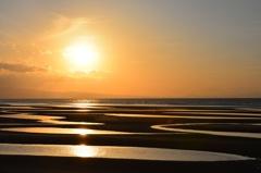 sunset along the beach