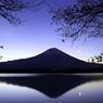 夜明けの田貫湖