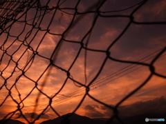 "Summer sunset   ""Bird cage"""
