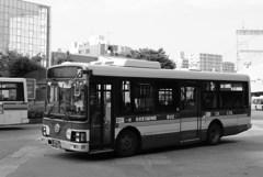 旅スナップ(ローカルバス)