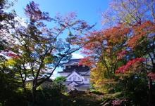 秋深まりて @岡崎城