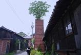 でっか~い植木鉢 @常滑やきもの散歩道