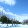 初雪で銀世界 #1 @デンパーク