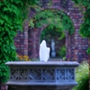 続秘密の花園 @デンパーク夏