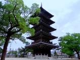 四国88箇所巡りデビュー#75 善通寺