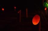 秋燈 @丈山苑