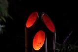 丈山苑ライトアップ#2