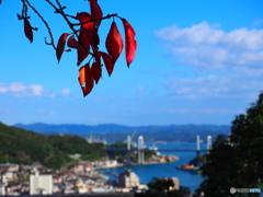 海道にも秋