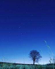 夜空に輝く星