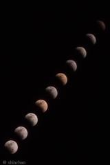 皆既月食-タイムラプス