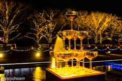 国営昭和記念公園 Winter Vista Illumination (4)