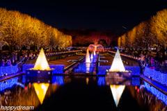 国営昭和記念公園 Winter Vista Illumination (1)