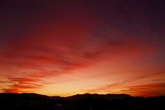 ある日の黎明-5