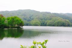 愛知県のどこかの湖