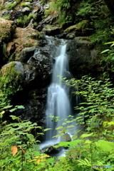 雌滝の流れ