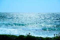 日本海。。