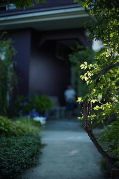 伊那の庭先