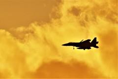 "Sunset Eagle*"""