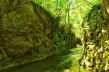 大河の一滴、緑の河となる。