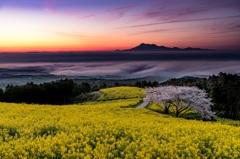 長崎 白木峰高原