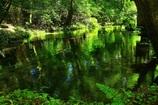 池の山水源