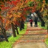 老いても・二人で道を歩み続ける