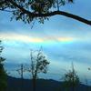 ・・見上げたら・・彩雲