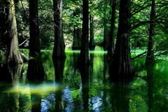 水のある風景38 【湖畔】