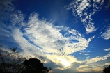ある日の雲