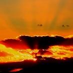 その他のカメラメーカー その他のカメラで撮影した(・・夕陽・・)の写真(画像)