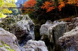 ・・峡谷の吊り橋・・