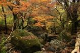 大人気のマゼノ渓谷 熊本