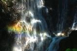 滝と虹 マー坊の定番場所