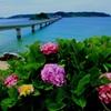 水のある風景 海3  【角島大橋】
