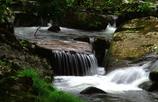 谷川の流れ