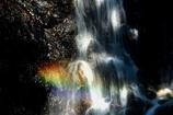幸せの滝≪虹≫