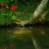 水のある風景 20 【川】