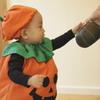 かぼちゃちょーだい!
