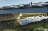 DSC09680  朝の橋模様