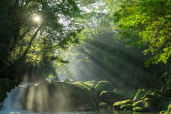 菊池渓谷の朝
